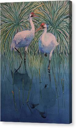 Still Water Canvas Print by Vicky Lilla