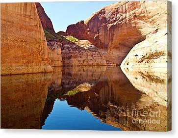Still Waters Canvas Print by Kathy McClure