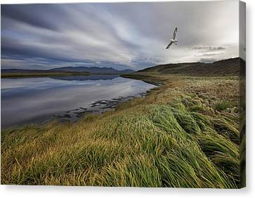 Stillness Canvas Print by Bragi Ingibergsson -