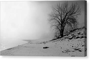 Stillness Canvas Print by Donna Duckworth