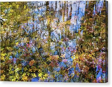 Stillness Holds Everything Canvas Print