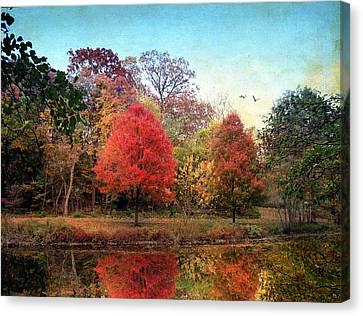 Maple Season Canvas Print - Stillness Speaks by Jessica Jenney