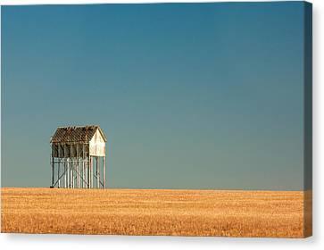 Loader Canvas Print - Stilts by Todd Klassy