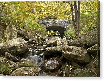 Stone Bridge 6063 Canvas Print by Michael Peychich