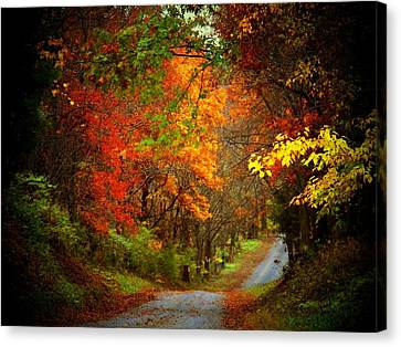 Stone Bridge Road Canvas Print by Joyce Kimble Smith