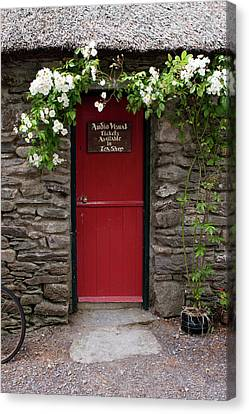 Stone Cottage, Ireland  Canvas Print by Aidan Moran