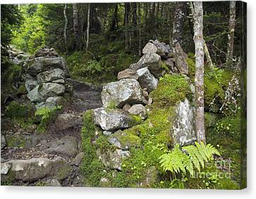 Stone Gate - Edmands Path - White Mountains New Hampshire  Canvas Print by Erin Paul Donovan
