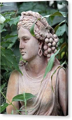 Stone Goddess  Canvas Print by Sue Feldberg