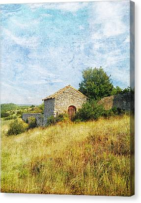 Provence Countryside Canvas Print by Catherine Alfidi