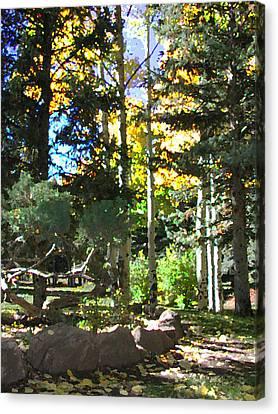 Stone Park Trails Canvas Print