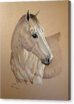 Canvas Print featuring the drawing Stone by Suzanne McKee