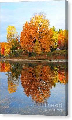 Stoneledge Lake Waterfront Reflection Canvas Print by Terri Gostola
