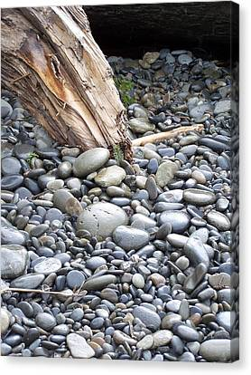 Stones Canvas Print by Gene Ritchhart