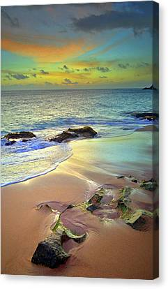 Canvas Print featuring the photograph Stones In The Sand At Sunset by Tara Turner