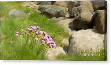 Stony Beach Impression Canvas Print by Lutz Baar