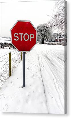 Stop Canvas Print by Adrian Evans