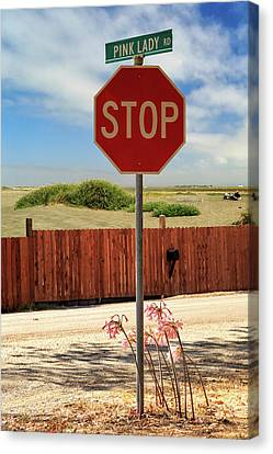 Canvas Print featuring the photograph Stop For Naked Ladies by James Eddy