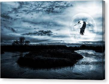 Canvas Print featuring the photograph Stork In Moonlight by Jaroslaw Grudzinski