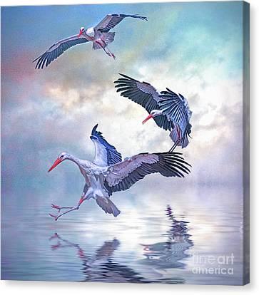 Storks Landing Canvas Print by Brian Tarr