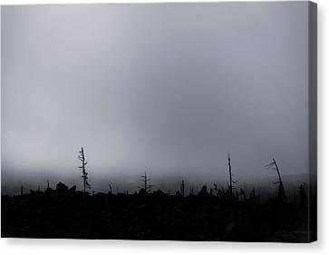 Canvas Print featuring the photograph Storm by Cat Connor