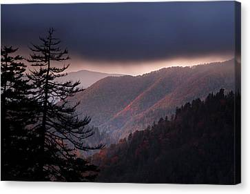 Evergreen Trees Canvas Print - Storm Clouds At Sunrise by Andrew Soundarajan