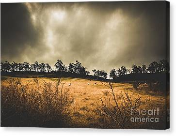 Storm Clouds Over York Plains Canvas Print by Jorgo Photography - Wall Art Gallery