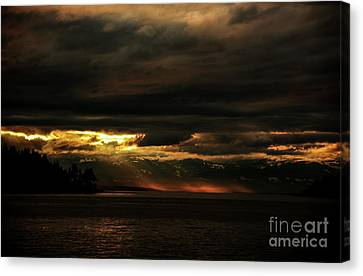 Storm Canvas Print by Elaine Hunter