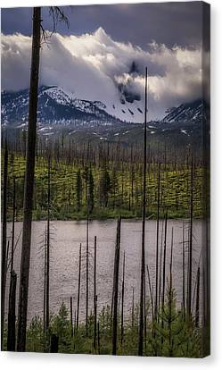 Canvas Print featuring the photograph Storm On Three Fingered Jack by Cat Connor