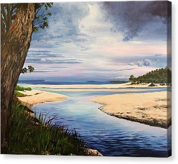 Storm Over Moona Moona Creek Canvas Print by Anne Gardner