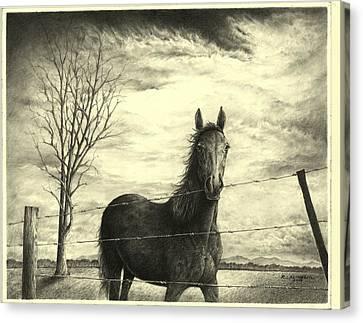 Storm Canvas Print by Richard Klingbeil