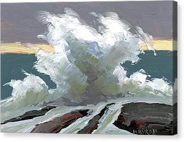 Storm Swept I Canvas Print by Mary Byrom