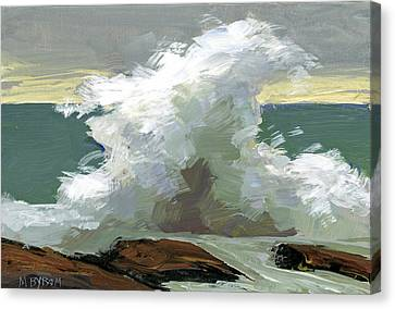 Storm Swept II  Canvas Print by Mary Byrom