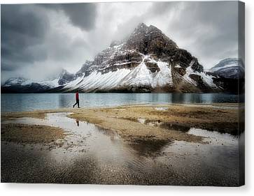Storm Tracker Canvas Print