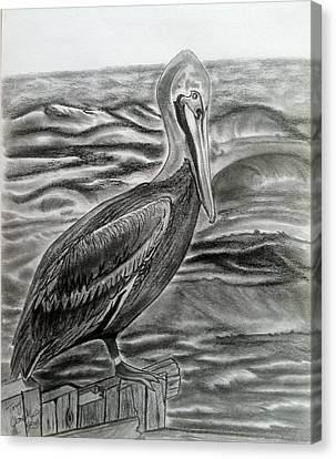 Storm Watcher Canvas Print by Tony Clark