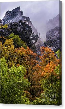 Stormy American Fork Canyon - Wasatch - Utah Canvas Print by Gary Whitton