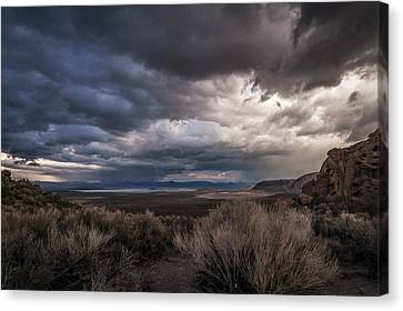 Stormy Day Canvas Print by Cat Connor