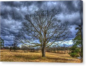 Stormy Day Oak Winter Farm Scene Art Canvas Print by Reid Callaway