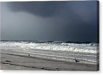 Stormy Canvas Print by Debra Forand