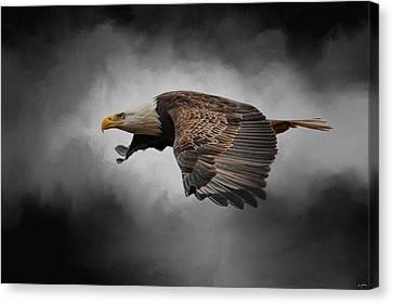 Stormy Sky Flight Canvas Print