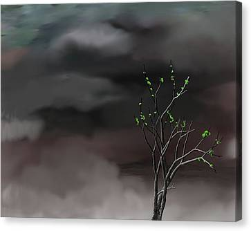 Stormy Weather Canvas Print by David Lane