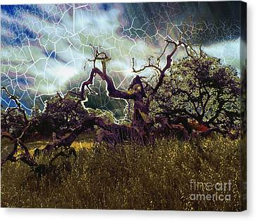 Stormy Weather Canvas Print by Robert Ball