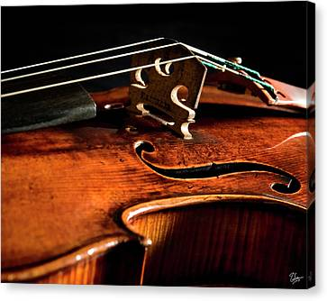Canvas Print featuring the photograph Stradivarius by Endre Balogh