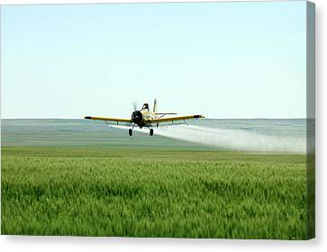Strafing Run Canvas Print