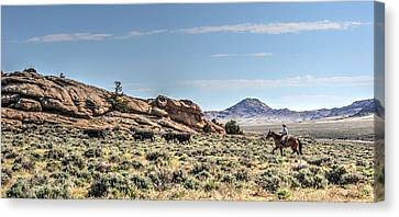Stragglers Canvas Print