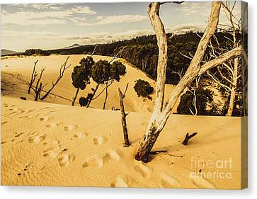 Strahan Sand Dune Landscape Canvas Print by Jorgo Photography - Wall Art Gallery