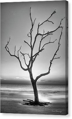 Stranded 2 Driftwood Beach Sunrise Jekyll Island Georgia Art Canvas Print by Reid Callaway