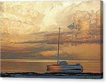 Stranded Canvas Print by HH Photography of Florida