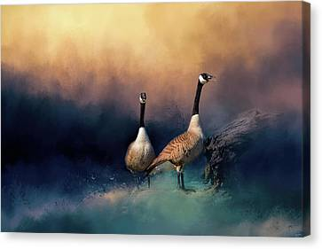 Geese Canvas Print - Stranded by Jai Johnson