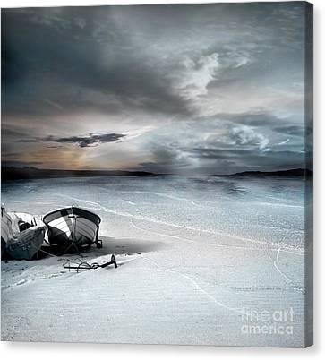 Stranded Canvas Print by Jacky Gerritsen