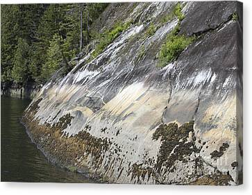 Strange Patterns On Rock Cliffs Canvas Print by Carolyn Brown
